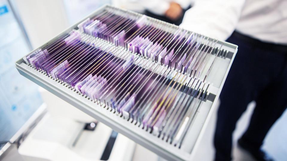 Dr. MI – A Bosch mesterséges intelligenciával segíti az orvosi diagnosztikát